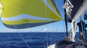 first view of St Lucia under the parasailor after 19 days at sea.