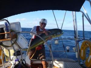 Mahi mahi on board