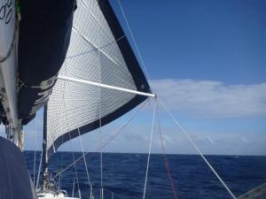 poled out headsail the worker