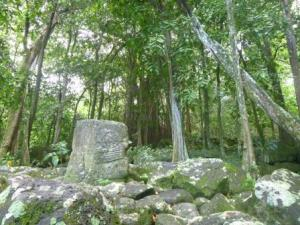 Tiki under banyan tree