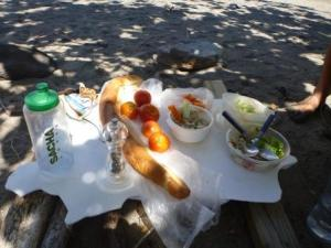 picnic at shark bay