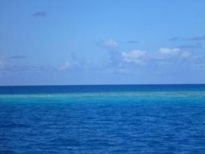 Coral fakarava on route south