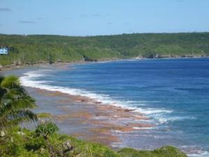 reef around Niue