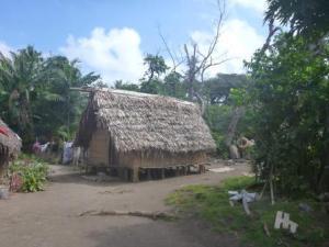 Village house Tanna