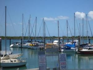 Bundaberg marina pontoons. Baringo just visible at the end.